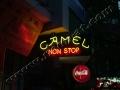 camel non stop-1